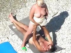 grande porca in spiaggia